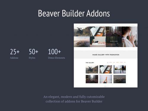 Livemesh – Addons for Beaver Builder Pro
