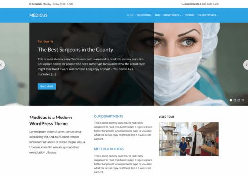 WPZOOM – Medicus