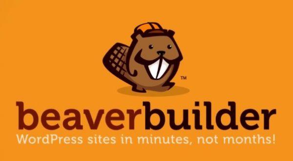 Beaver Builder Plugin (Pro Version)
